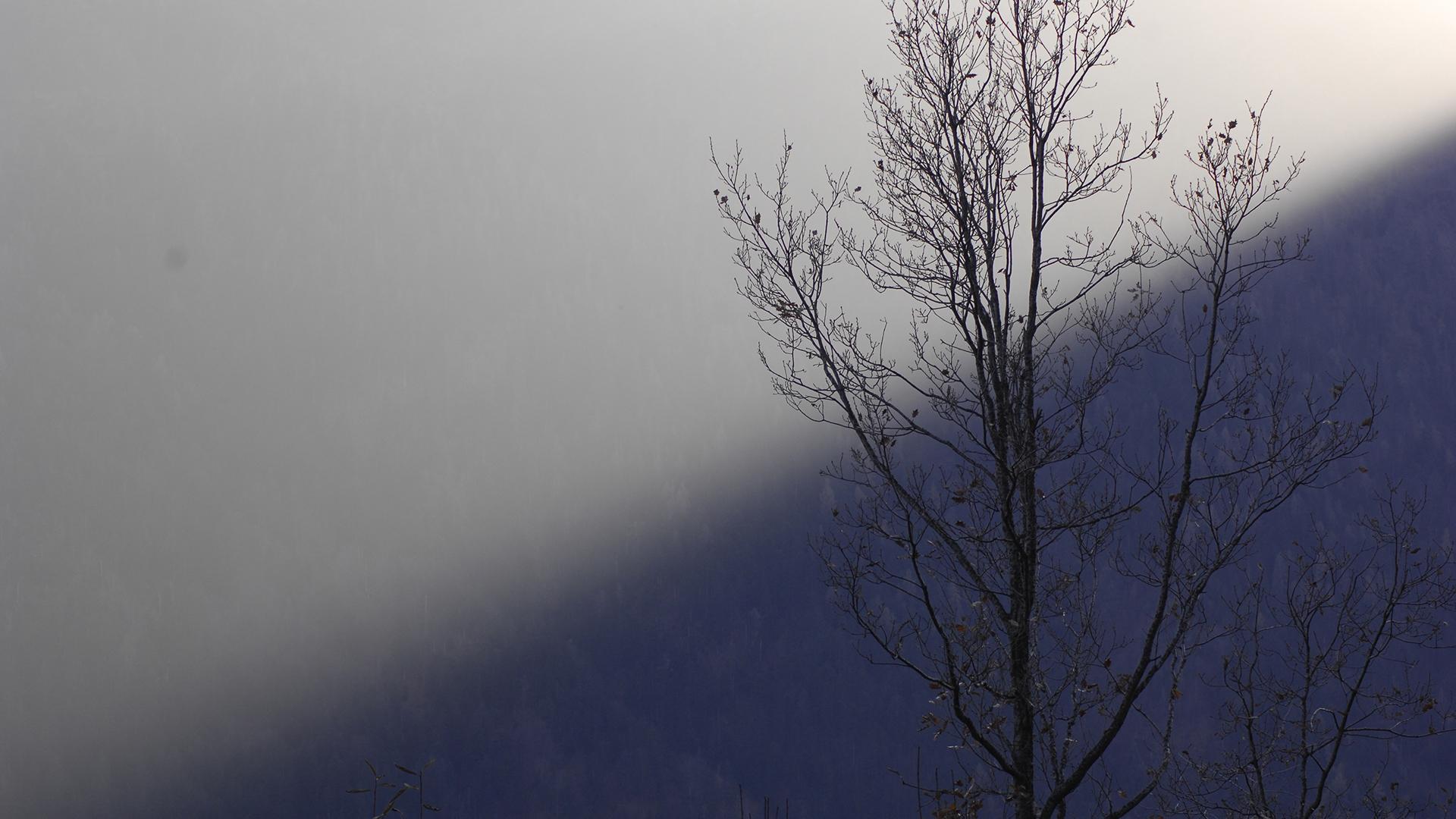 Image for: Lo specchio